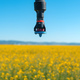 Linear or lateral move irrigation with rotator style pivot applicator sprinkler in rapeseed field - PhotoDune Item for Sale