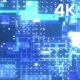 4k Digital Textures - VideoHive Item for Sale