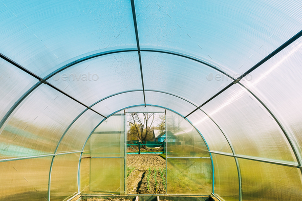Empty New Greenhouse In Vegetable Garden Or Hothouse Or Greenhouse. Early Spring - Stock Photo - Images