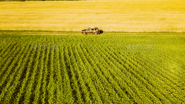 Aerial View Of Car SUV Parked Near Countryside Road In Spring Field Rural Landscape. Car Between - Stock Photo - Images