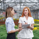 Two business women having a conversation while visiting greenhouse - PhotoDune Item for Sale