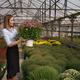 Portrait woman entrepreneur holding pot with flowers - PhotoDune Item for Sale