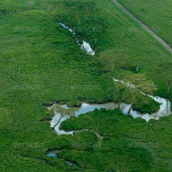 aerial view on a river in the serengeti - Stock Photo - Images