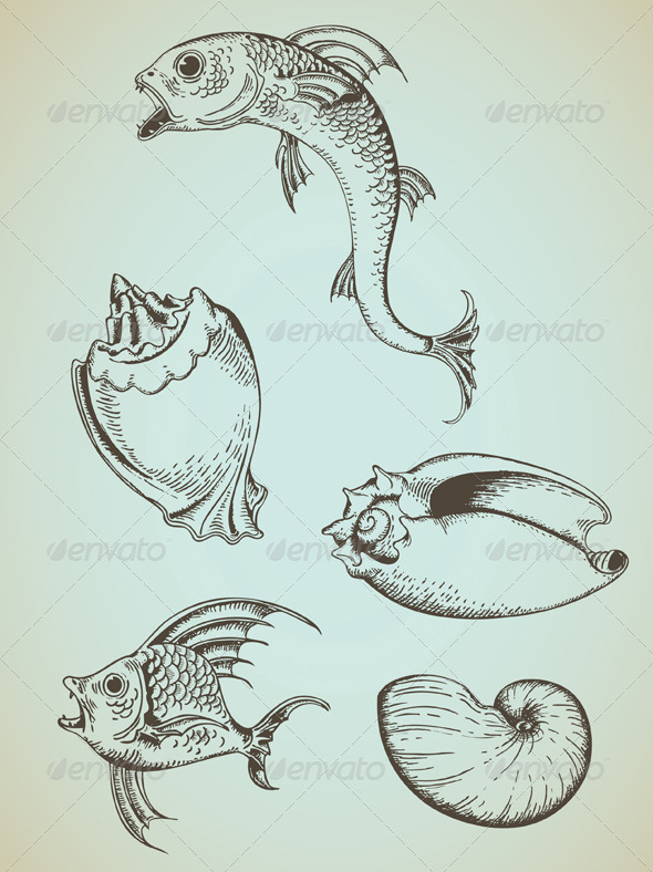 Vintage Sea Elements - Animals Characters