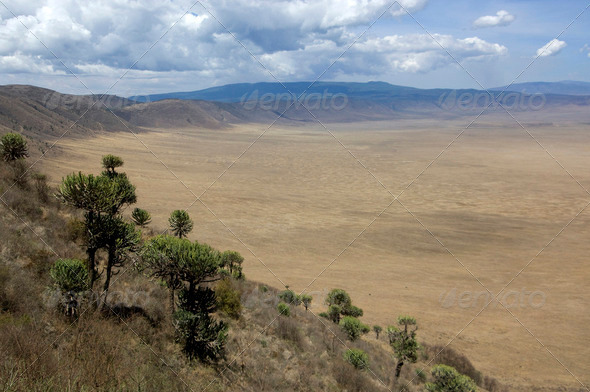 view on the Ngorongoro Crater, tanzania - Stock Photo - Images