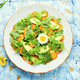 Diet salad with chrysanthemum leaves and avocado - PhotoDune Item for Sale