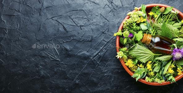 Natural medicine,fresh plants,healing herbs - Stock Photo - Images
