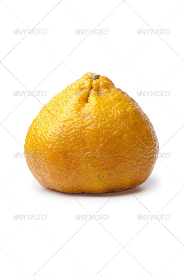Whole single ugli fruit - Stock Photo - Images