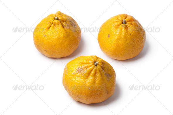 Whole fresh ugli fruit - Stock Photo - Images
