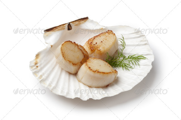 Seared scallops served in a shell with dill - Stock Photo - Images