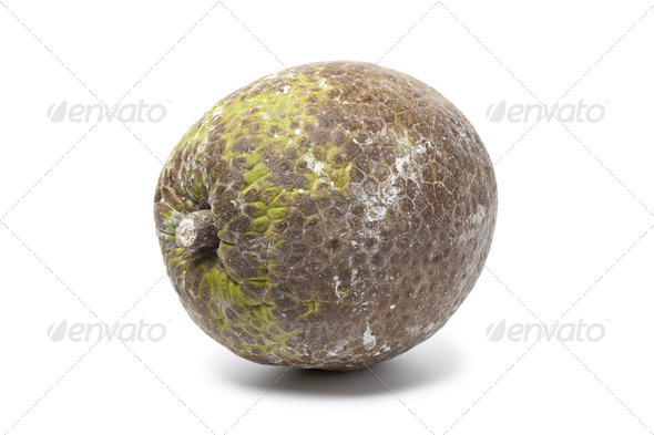 Whole single breadfruit - Stock Photo - Images
