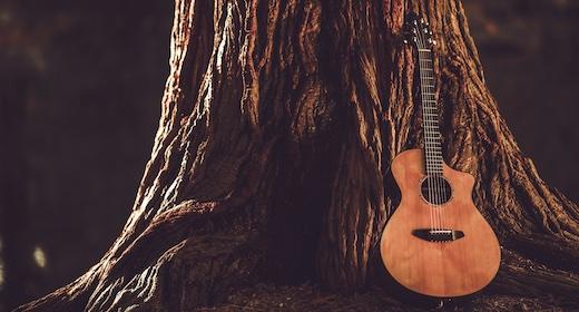 Medieval Acoustic Guitars