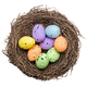 Colorful easter eggs in a bird nest - PhotoDune Item for Sale