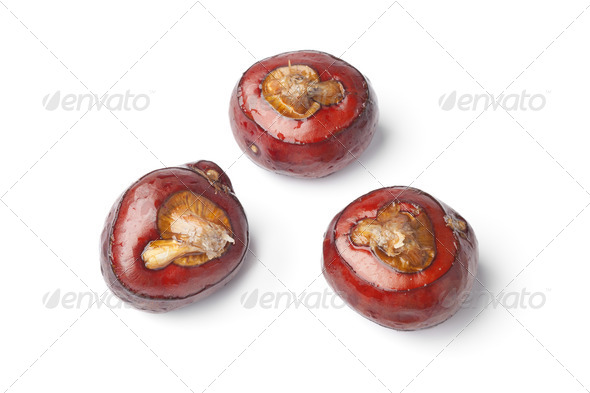 Whole water chestnuts - Stock Photo - Images