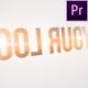 Quick Clean Contour Logo 2 (Premiere Version) - VideoHive Item for Sale