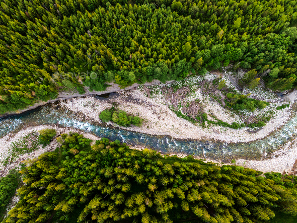 Top Down View at Bialka River in Green Forest, Poland - Stock Photo - Images