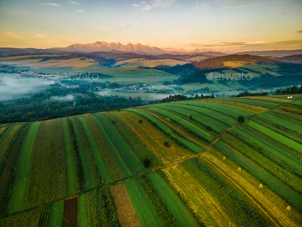 Aggriculture Field on Hill in Pieniny Park. Aerial Drone View - Stock Photo - Images