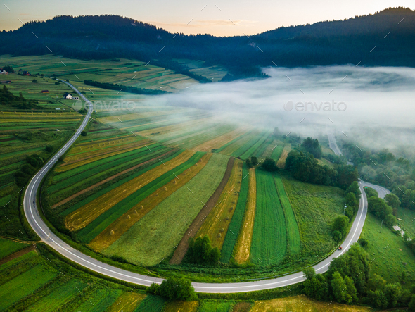 Morning Fog over Farm Fields and Curvy Road in Pieniny Park. Drone View - Stock Photo - Images