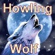 Wolf Howling 1