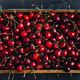 Cherry. Sweet Cherries in wooden box or crate on dark stone concrete background. - PhotoDune Item for Sale