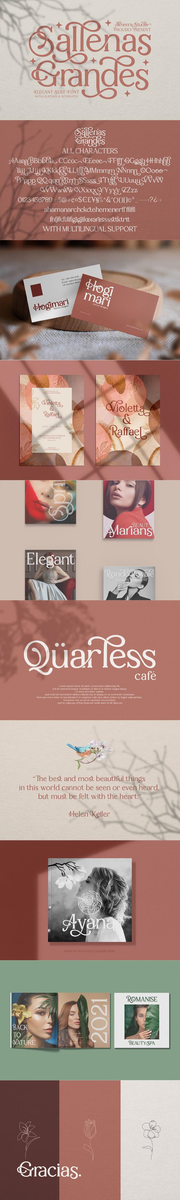 Sallenas Grandes|Elegant Serif Font