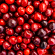 cherry Fruit Background, cherry Texture Pattern - PhotoDune Item for Sale