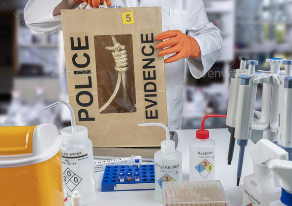 Police scientist extracts rope from hanging victim, crime lab analysis, conceptual image - Stock Photo - Images