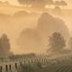 beautiful misty sunrise on belgian farmland - PhotoDune Item for Sale
