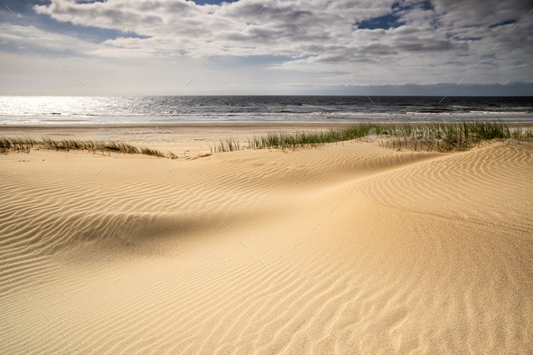 sand beach at north sea on sunny day - Stock Photo - Images