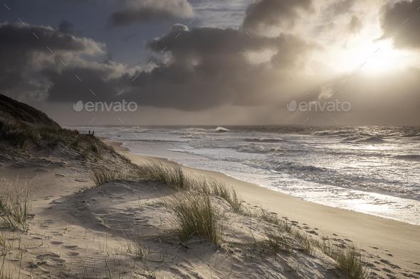 beautiful sun light over North sea coast - Stock Photo - Images