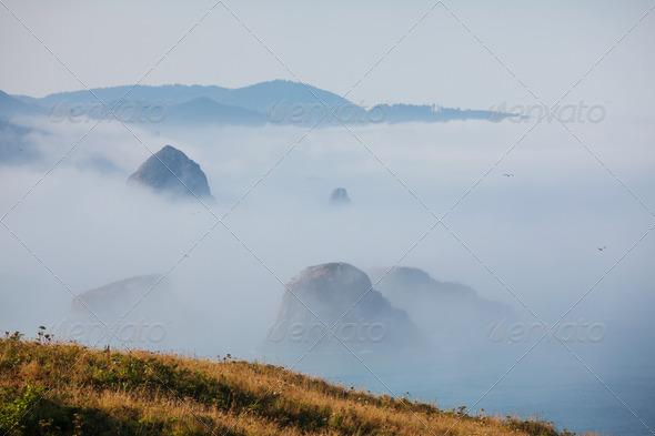 Ocean coast - Stock Photo - Images