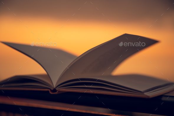 Cozy Evening with a Book - Stock Photo - Images