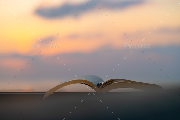 Nice Evening with a Book - Stock Photo - Images
