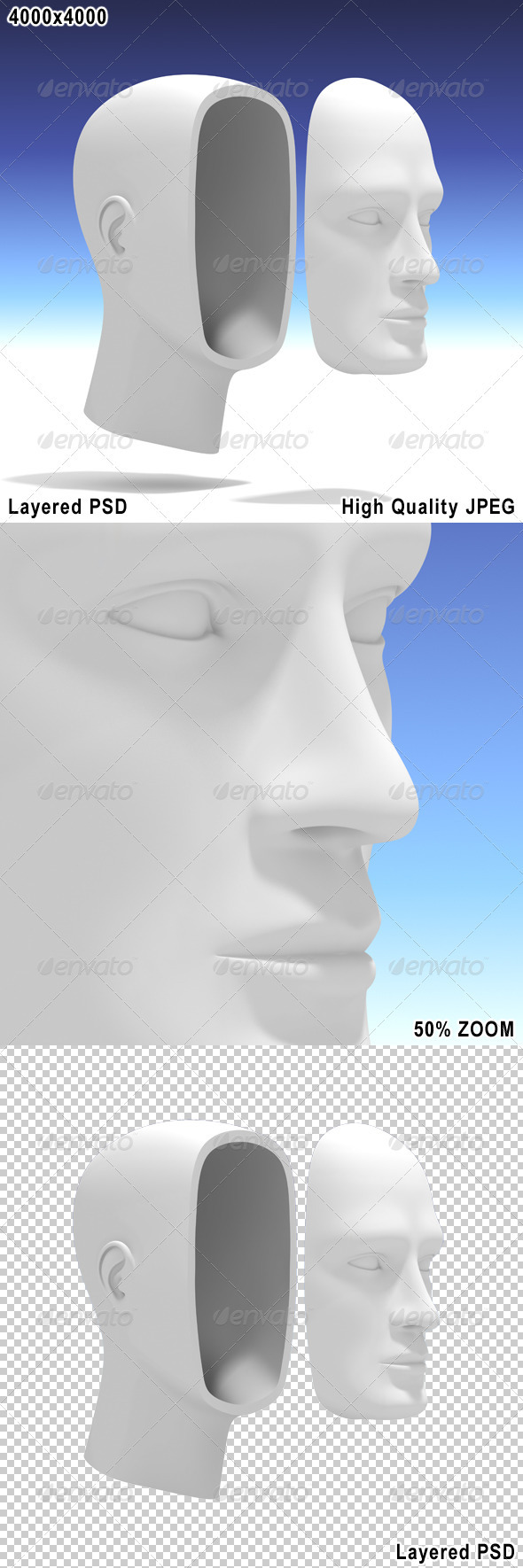 Human Head with Separate Face - Characters 3D Renders