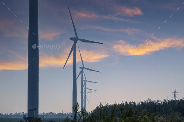 coastal wind farm at dusk - Stock Photo - Images