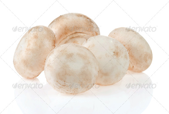mushroom isolated on white - Stock Photo - Images