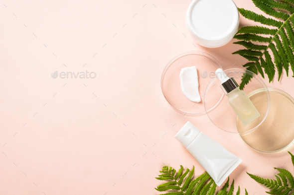 Glass petri dish with cosmetic products and green plants - Stock Photo - Images