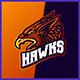 Hawk Eagle - Mascot Esport Logo Template