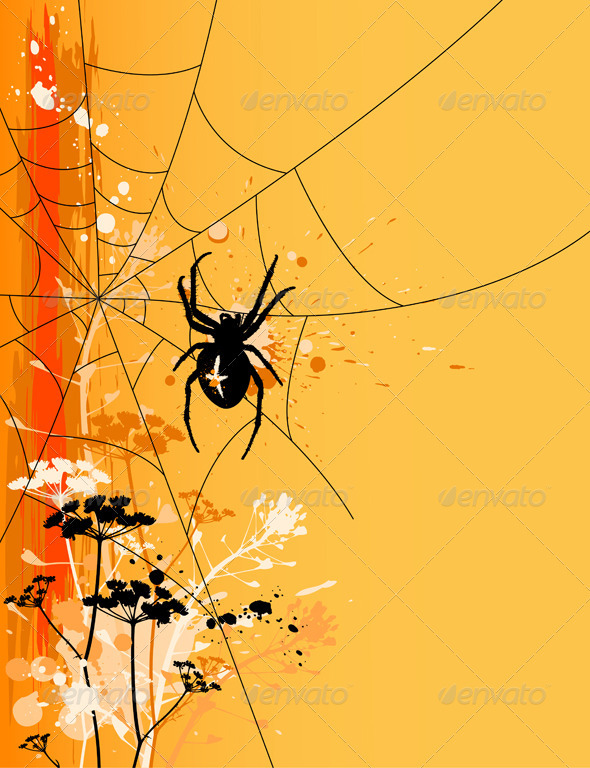 Halloween Background with Spider - Halloween Seasons/Holidays
