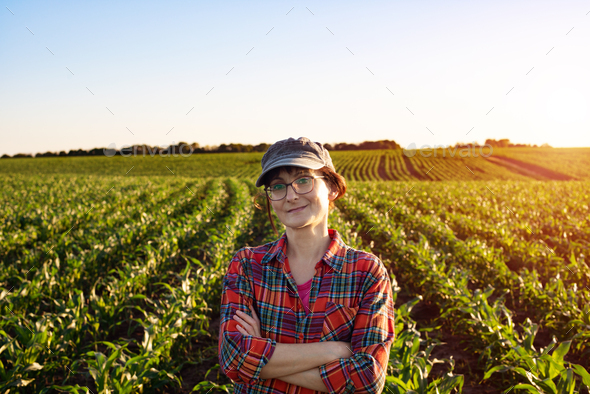 Middle age female caucasian smiling farm worker with crossed arms stands at corn field - Stock Photo - Images