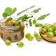 Jam in a glass jar and fresh gooseberry - PhotoDune Item for Sale