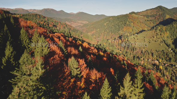 Aerial autumn mountain forest. Sun nobody nature landscape. Countryside buildings at natural beauty - Stock Photo - Images