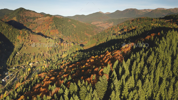 Sun autumn mountain trees at ranges. Aerial nobody nature landscape. Road at mount valley village - Stock Photo - Images