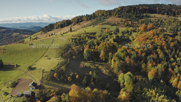 Mountain village at top aerial. Autumn nobody nature landscape. Green trees, grass at cottages - Stock Photo - Images