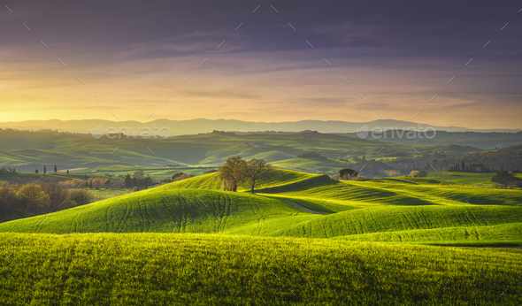 Springtime in Tuscany, rolling hills and trees. Pienza, Italy - Stock Photo - Images