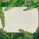 Fern natural background with empty paper card and free copy space - PhotoDune Item for Sale