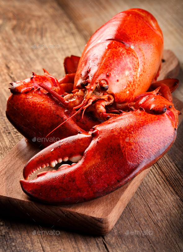 Boiled lobster - Stock Photo - Images