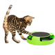 Bengal kitten plays an interactive toy isolated on white - PhotoDune Item for Sale
