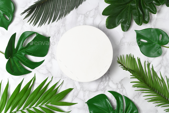 Frame of tropical leaves - Stock Photo - Images