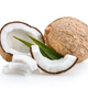 coconut isolated on white - PhotoDune Item for Sale